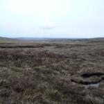 Towards Nidderdale