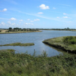 Great Deep, Thorney Island