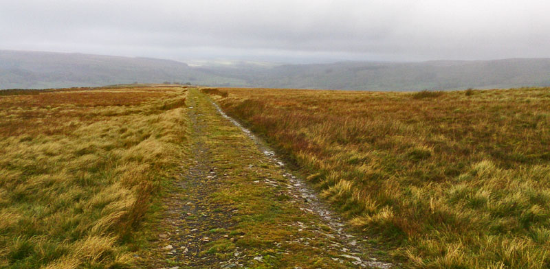 Track leading down from The Dodd