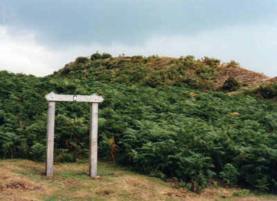 Pentwyn fort