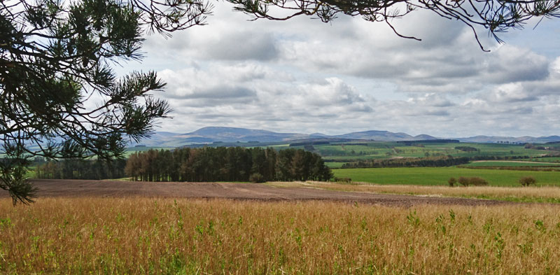 Looking back to The Cheviot