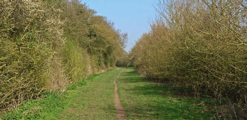 Approaching Lewknor