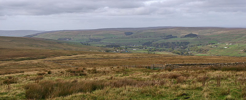 Nentdale