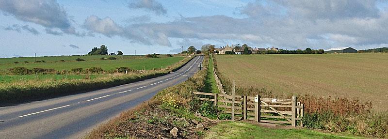 Harlow Hill