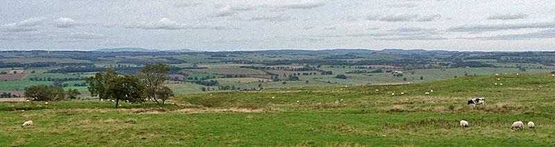 Looking north