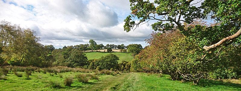 Craggle Hill