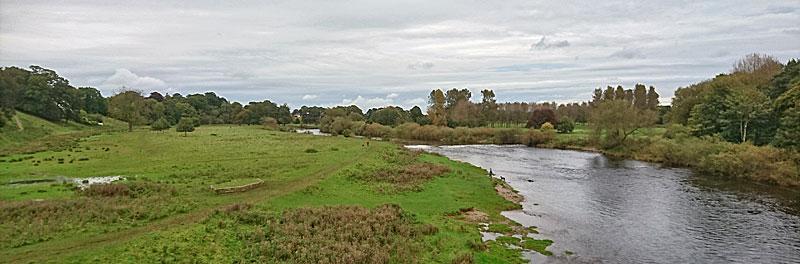 flood meadows